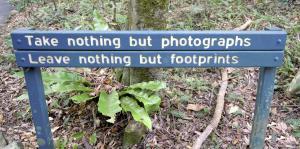 take nothing leave nothing